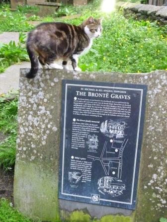 Le chat bosse le plan du cimetière qui borde l'église et le presbytère